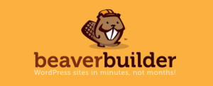 Beaver Builder Drag Drop Publisher